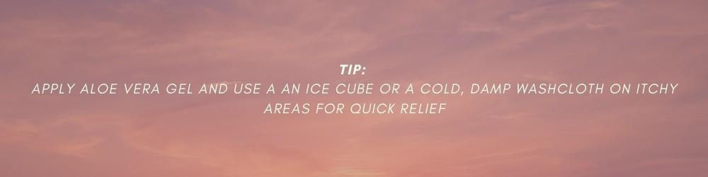aloe vera tip 5