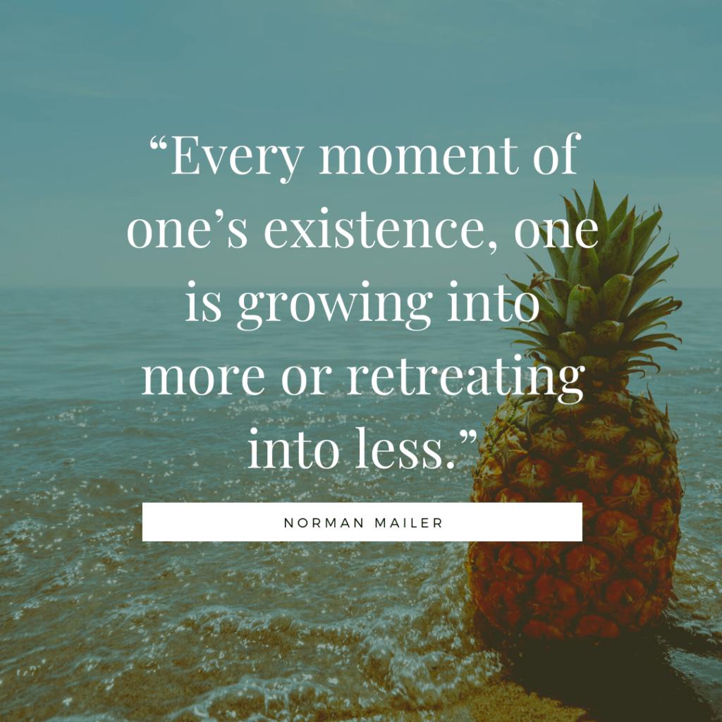 Norman Mailer self development quotes